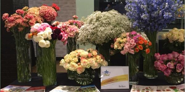 Texas State Florists Association Rio Roses