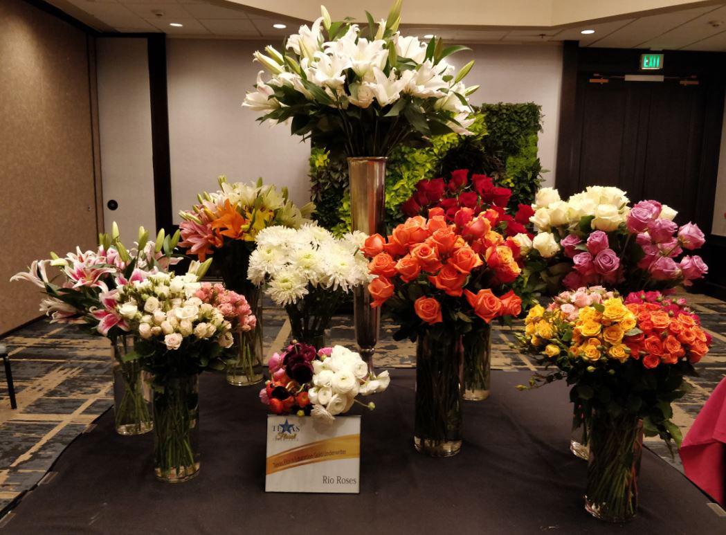 Texas Floral Forum 2018 Rio Roses